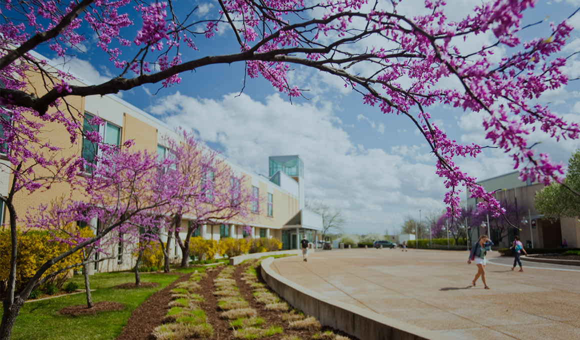 St. Charles Community College campus in the spring accented by a tree blooming with little purple flower buds